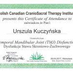 Certyfikat U-K PCCTI